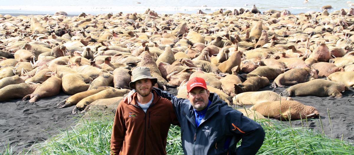 Alaska wildlife viewing tours